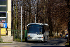 NEOPLAN N316 #36
